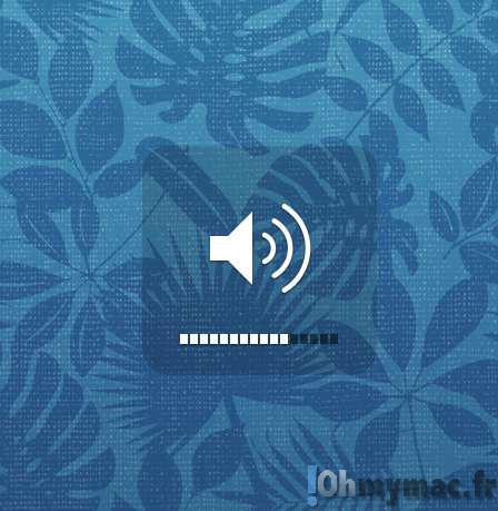 Comment ajuster précisément le niveau du volume sur son Mac ?
