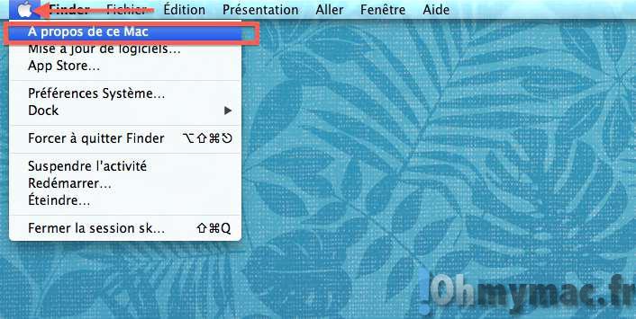 Afficher l'utilisation du disque dur Mac et voir ce qui prend de la place