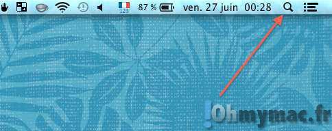Cacher l'icône loupe de Spotlight dans la barre des menus du Mac