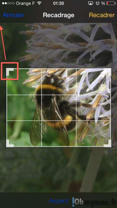 Recadrer une photo puis restaurer l'original sur iPhone ou iPad