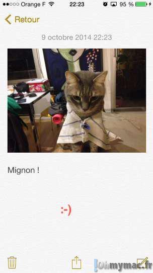iOS 8: créer des Notes avec des photos